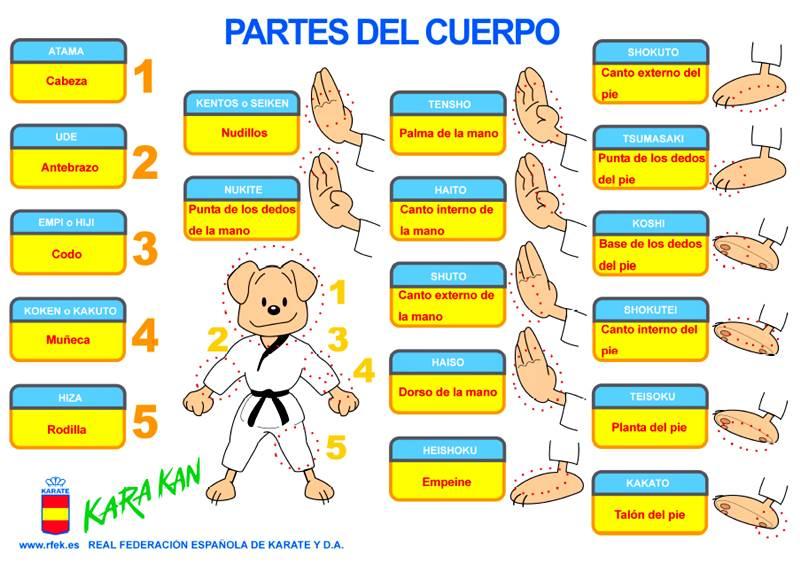 Pequeños Karatekas