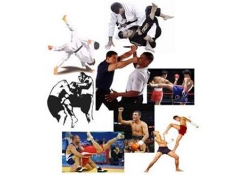 Gimnasio Shotokan - VII Campus de Artes Marciales y Deportes de Contacto  - Tu gimnasio en Gijón